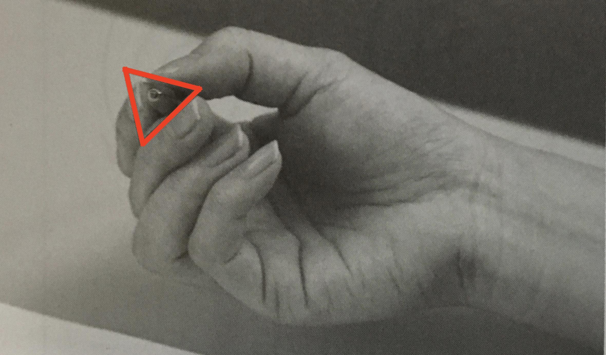 ペンの持ち方(三角形)